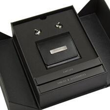 Pinnacle-P1-box.jpg