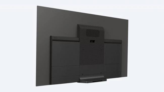 Sony_XBR-65A8F_back_panel.jpg