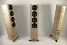 Birch-Acoustics-Raven-Floorstanding-speaker-review-small.jpg