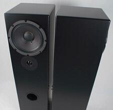 Tekton_M-Lore_floorsatanding_speaker_review_pair_angled.jpg