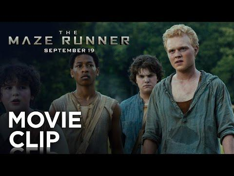 "The Maze Runner | ""Doors"" Clip [HD] | 20th Century FOX"
